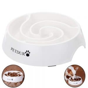 Petduro Slow Feed Dog Bowl
