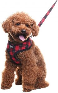 Pupteck Soft Mesh Dog Harness With Leash