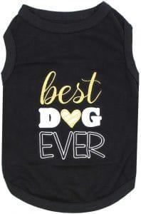 Parisian Pet Captain Dog T Shirt