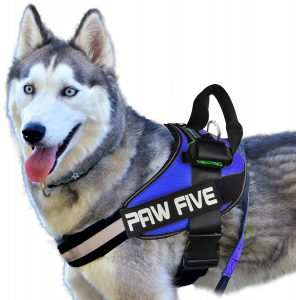 Paw Five Core 1 Reflective No Pull Large Dog Harness