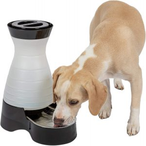 Petsafe Healthy Pet Water Station Dog And Cat Water System
