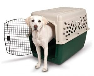 Petmate Ruffmaxx Large Outdoor Dog Kennel
