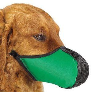 Pro Guard Softie Dog Muzzle