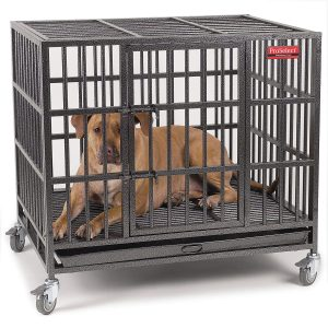 Proselect Empire Heavy Duty Dog Cage