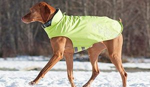Rc Pet Products Venture Outerwear Dog Coat