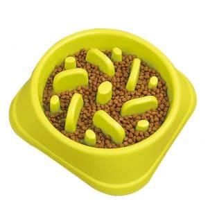 Staruby Slow Feeder Dog Bowl