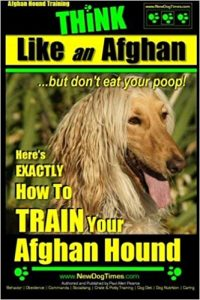 Think Like An Afghan