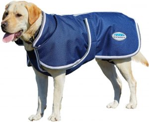 Weatherbeeta Parka Deluxe Dog Coat