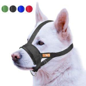 Wintchuk Nose Strap Dog Muzzle