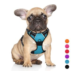 Barkbay No Pull Dog Harness Large Step In Reflective Dog Harness With Front Clip And Easy Control Handle