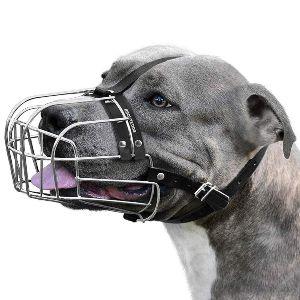 Bronzedog Dog Muzzle Pitbull Metal Mask