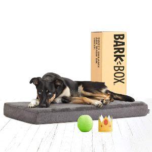 Barkbox Memory Foam Dog Bed Multiple Sizes Colors