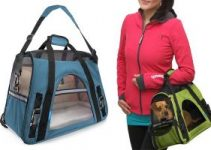 Best Airline Approved Dog Carriers Review