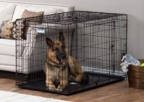 7 Best Dog Kennels for Separation Anxiety (Reviews Updated 2021)