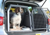 10 Best Dog Crates for the Car (Reviews Updated 2021)