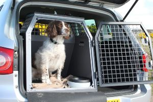 Best Dog Crates For The Car Review