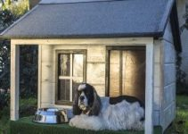 10 Best Dog Houses For Hot Weather (Reviews Updated 2021)