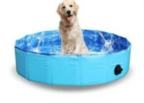 Best Dog Pools Review