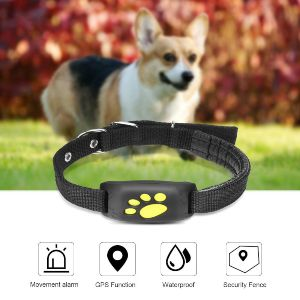 Best Gps Dog Fence Review