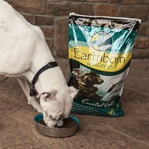 Best High Fiber Dog Food For Anal Problems Review