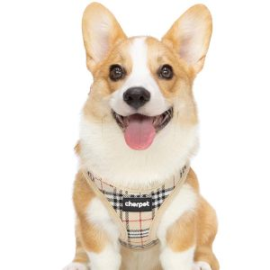 Cherpet Puppy Harness And Leash Set