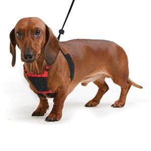 Dog Harness No Pull And No Choke Humane Design