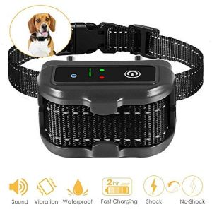 Elenest Premier Pet Bark Collars, 2019 Best Anti Bark Collar For Small Large Dogs