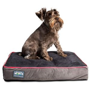 First Quality Orthopedic Dog Bed Pure Premium Shredded Memory Foam Ideal For Aging Dogs