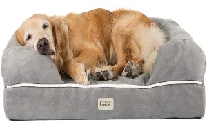 Friends Forever Orthopedic Dog Bed Lounge Sofa Removable Cover 100% Suede 2.5 5 Mattress Memory Foam