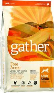 Gather Free Acres Organic Free Run Chicken Dry Dog Food