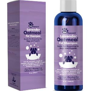 Honeydew Colloidal Oatmeal Dog Shampoo With Pure Lavender Essential Oils No Tear Shampoo For Dry Itchy Skin Relief