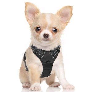 Rabbitgoo Dog Harness No Pull Pet Harness Adjustable Outdoor Pet Vest