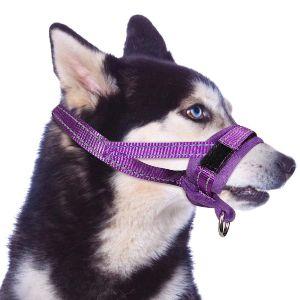 Slowton Nylon Dog Muzzle, Dog Mouth Cover Adjustable Soft Padded Quick Fit