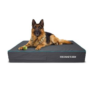 The Dog's Bed Orthopedic Dog Bed, Premium Memory Foam S Xxxl, Waterproof, Dog Pain Relief For Arthritis
