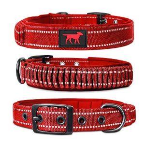 Tuff Pupper Heavy Duty Dog Collar With Handle Ballistic Nylon Heavy Duty Collar