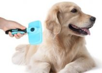 10 Best Wired Dog Brushes (Reviews Updated 2021)