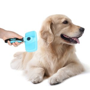 Best Wired Dog Brush Review