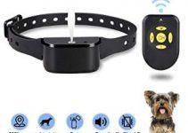 Best Bark Collar Review