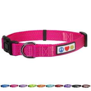 10. Pawtitas Reflective Dog Collar