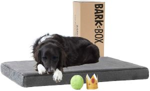 Barkbox Memory Foam Platform Dog Bed Plush Mattress For Orthopedic Joint Relief Machine Washable Cuddler With Removable Cover And Waterproof Lining Includes Squeaker Toy
