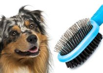 5 Best Dog Brushes for Australian Shepherds (Reviews Updated 2021)
