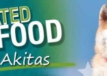 5 Best Dog Food for Akitas (Reviews Updated 2021)