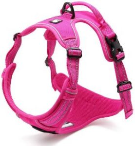 Chai's Choice Best Outdoor Adventure Dog Harness. 3m Reflective Vest With Two Leash Attachments.