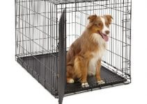 Best Dog Crate For Australian Shepherds Reviews