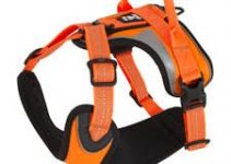 Dog Harness For Australian Shepherds