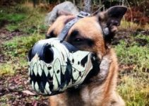 Dog Muzzle For Australian Cattle Dogs
