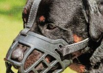 Dog Muzzle,soft Basket Silicone Muzzles For Dog, Best To Prevent Biting, Chewing And Barking, Allows Drinking And Panting, Used With Collar (2)