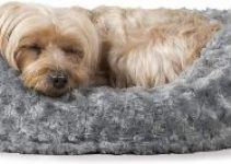 Furhaven Pet Dog Bed Round Oval Cuddler Nest Lounger Pet Bed For Dogs & Cats Available In Multiple Colors & Styles