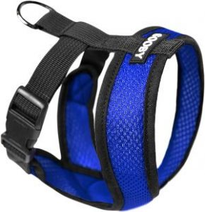Gooby Comfort X Head In Harness, Small Dog Harness With Patented Choke Free X Frame