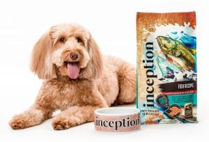 Inception Dog Food